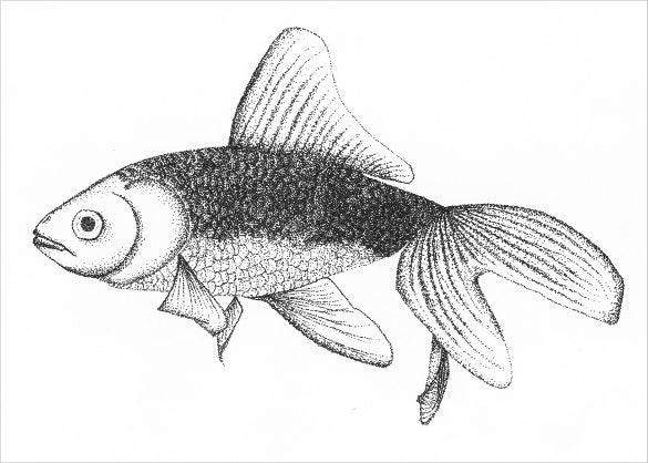easy to draw a fish with pen