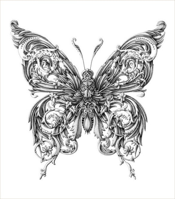 fineliner butterfly pen drawing