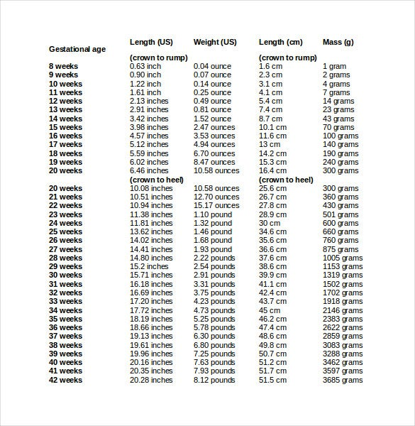 Free Ms Word Baby Weight Chart Template Download  Free