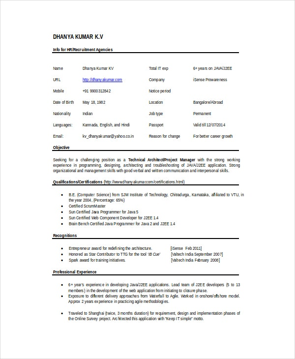 Technical Architect Resume Template
