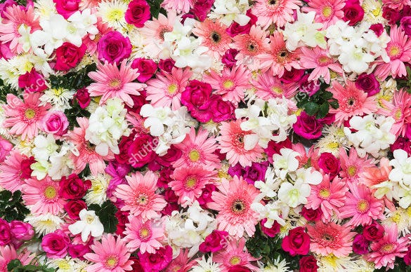 easy to download flower background