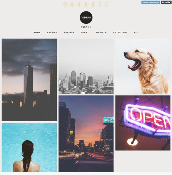 blogging responsive tumblr theme 19