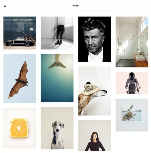 designer photography tumblr theme 14