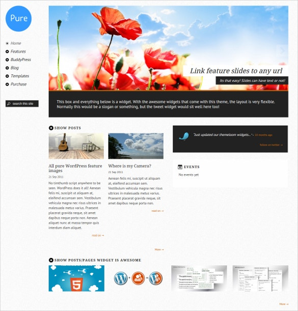 responsive wordpress theme 49