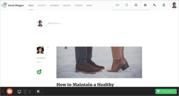 social blogger buddypress theme 89