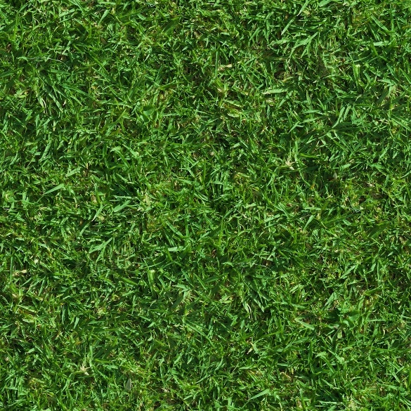 dark green grass texture for download