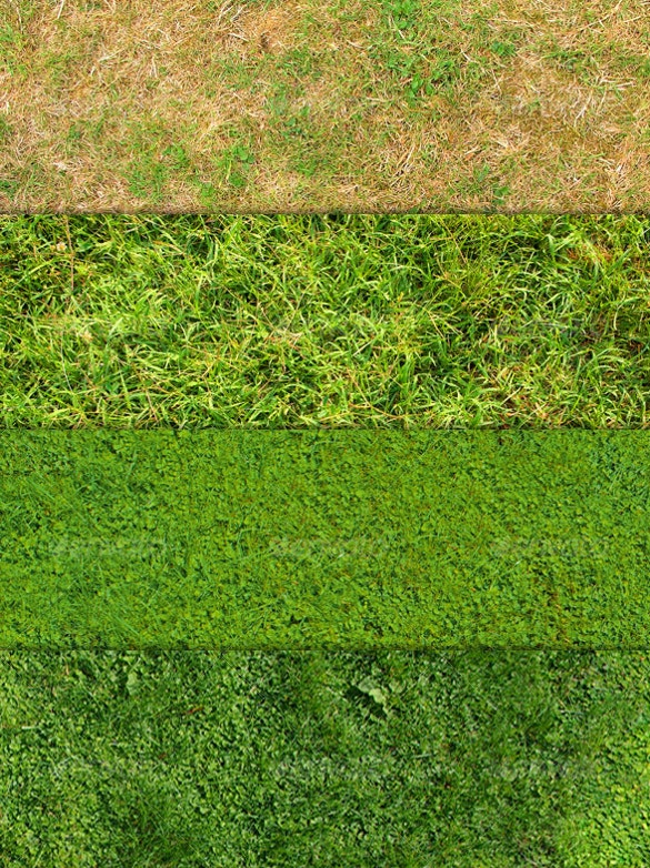 12 awesome grass textures for download