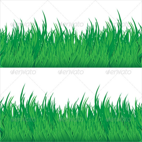 green grass texture for download