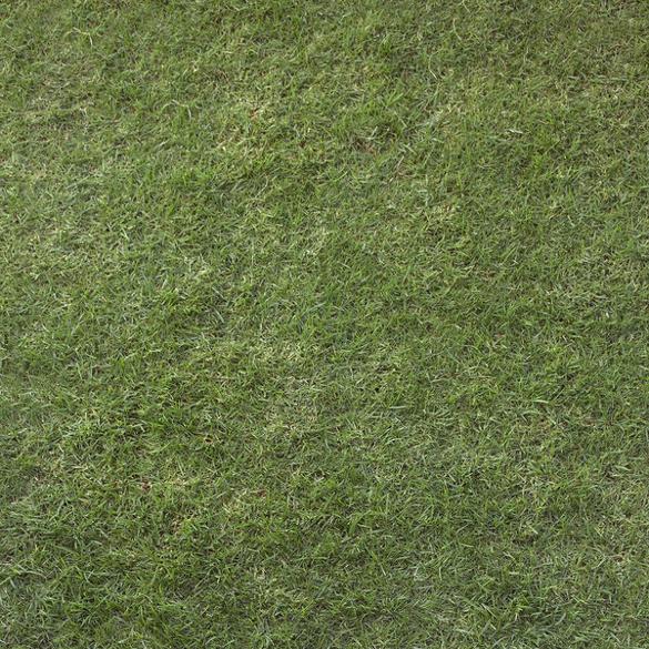 Grass Textures – 30+ Free JPG, PNG, PSD, AI, Vector EPS Format