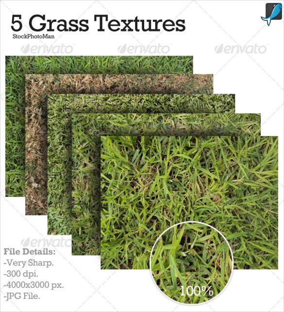5 atttractive grass textures for download
