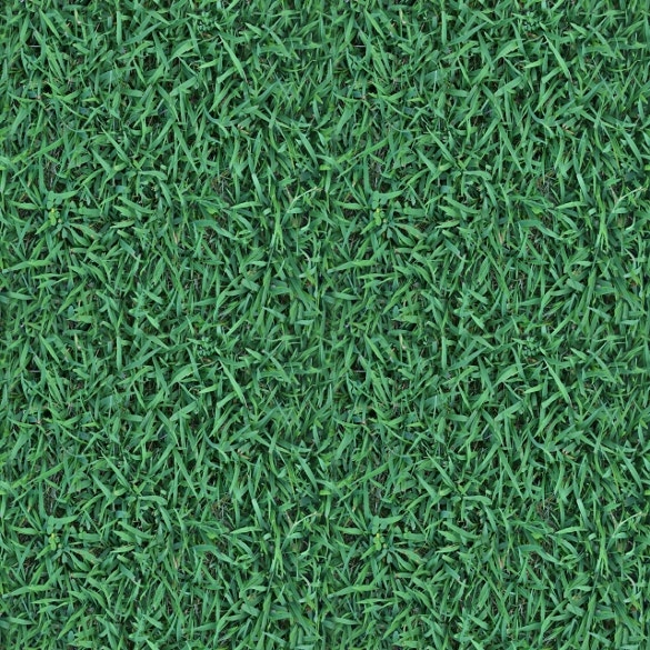 cute green grass texture for download
