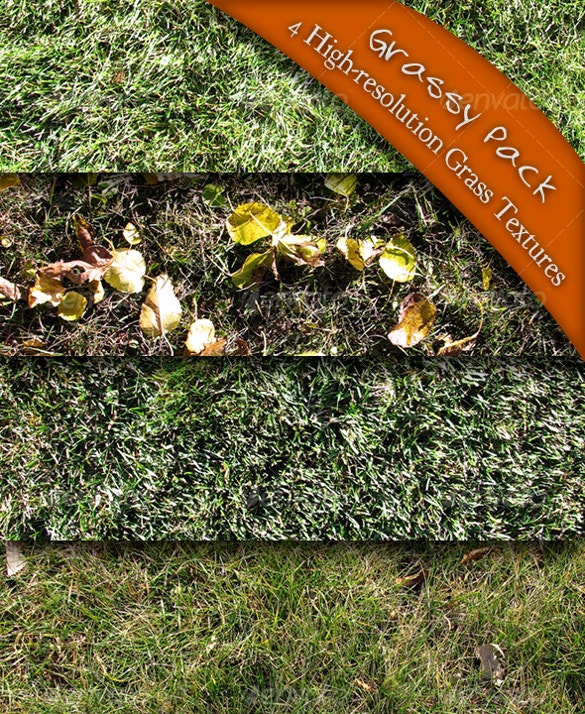 4 types of grass textures for download