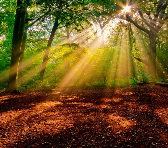 sunrise nature wallpaper for download