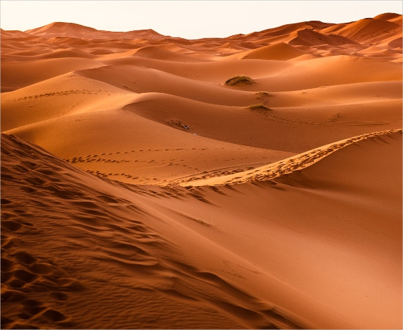 desert nature wallpaper for download