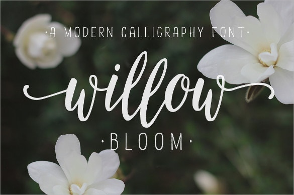 calligraphy willow bloom logo font ttf download