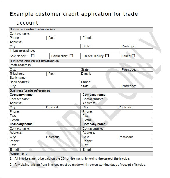 credit application template  u2013 13  free word  pdf documents