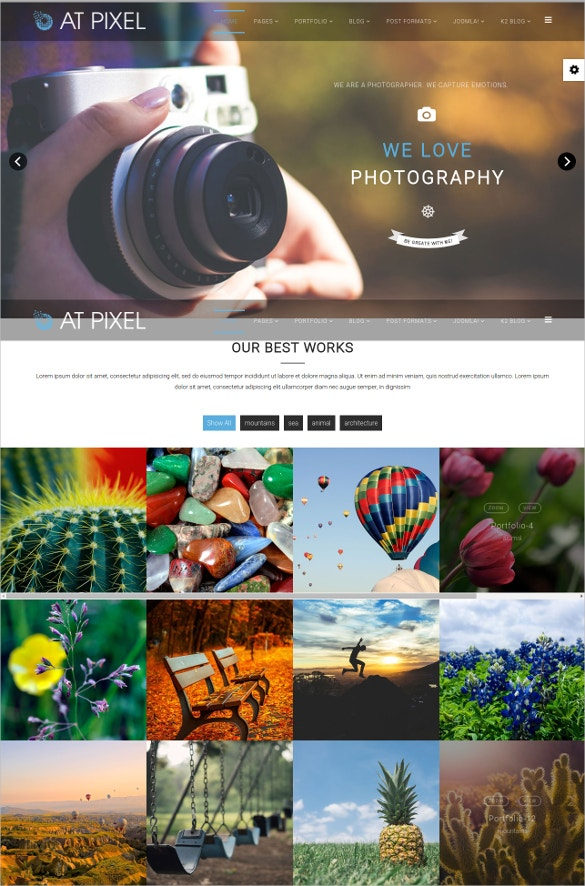 photography pixel joomla template