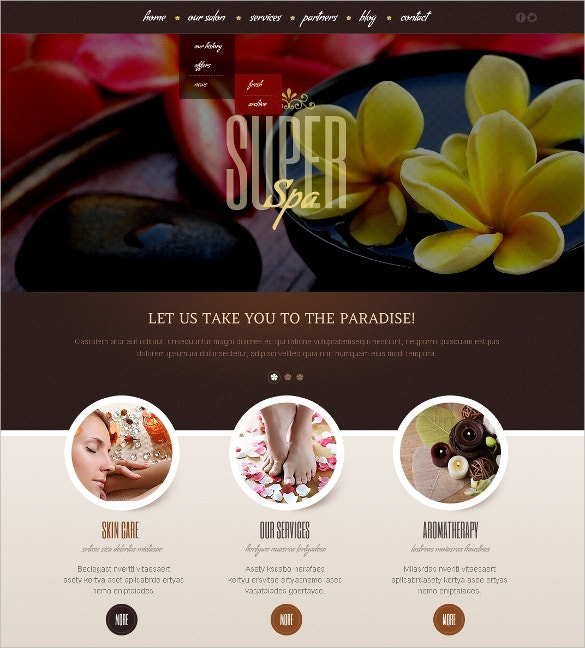beauty salon super spa blog wordpress theme 67