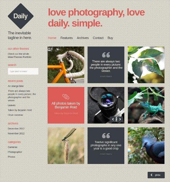 beautiful gallery wordpress blog photo template 39