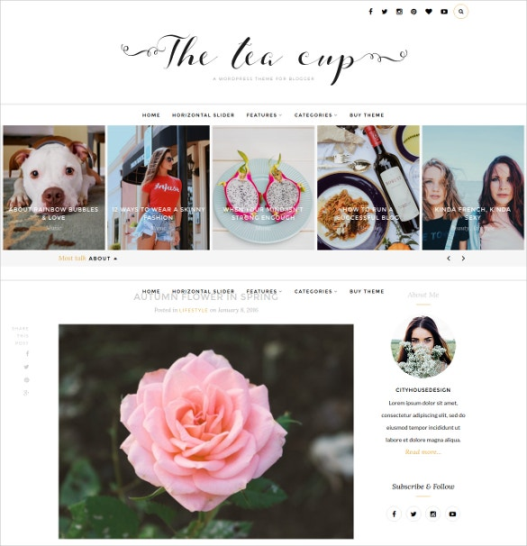 designer beautiful photography wordpress blog template 25