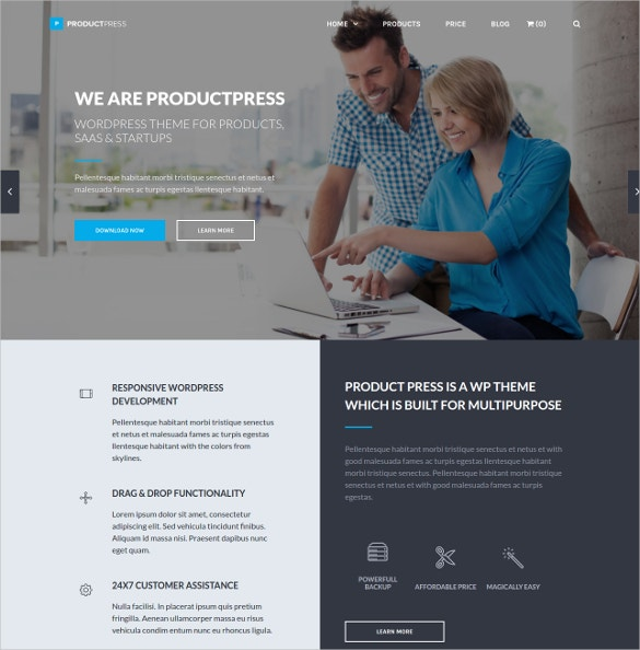 product software developer wordpress website theme 49