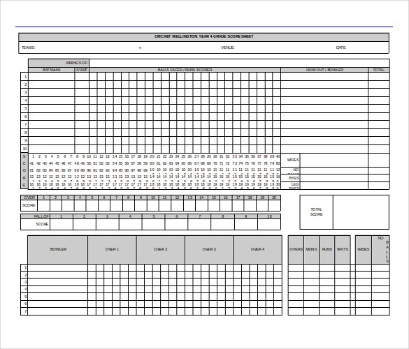 cricket score card ms word format free template