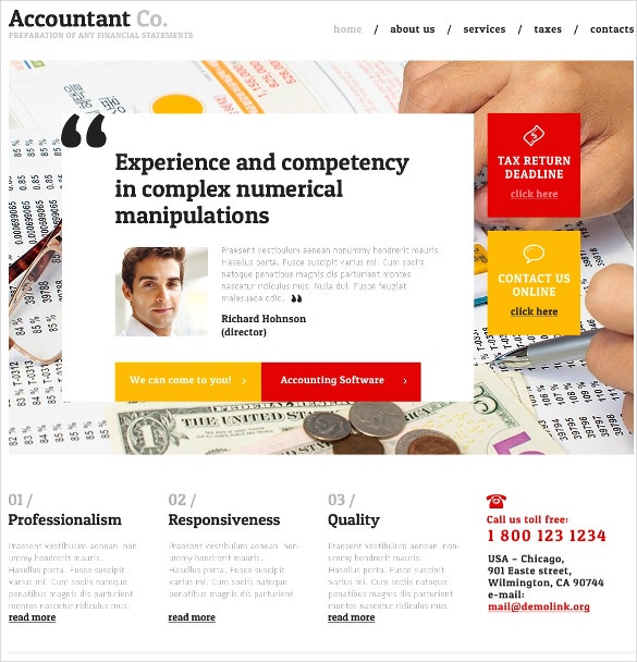 experience accounting website template 69