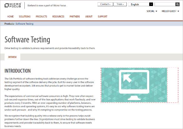 micro focus borland software testing tool