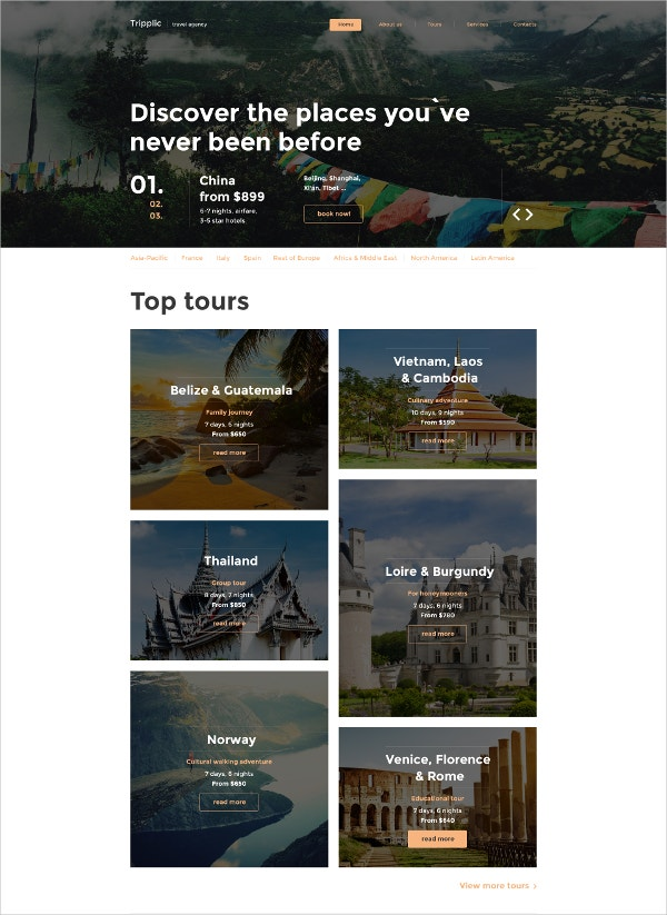Tripplic Website HTML5 Template