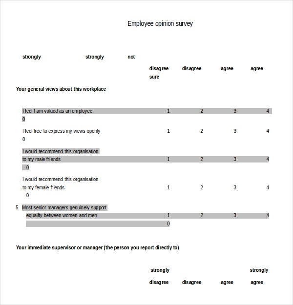 Employee Opinion Survey Template Example Format
