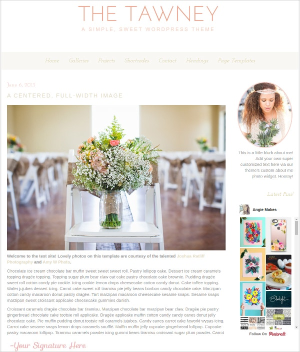 Photography Feminine WordPress Theme $70