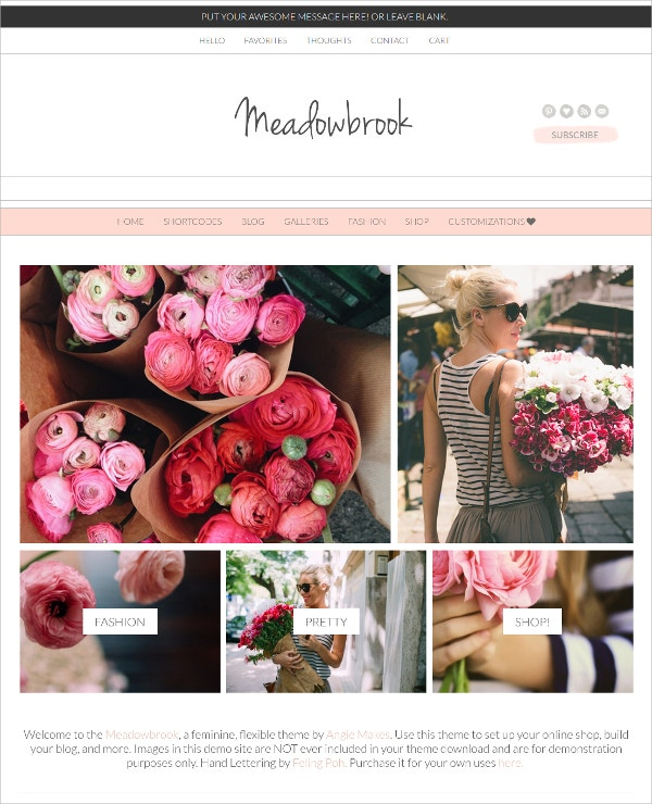 Boutique Feminine WordPress Theme $70