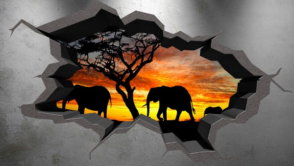 31+ Amazing 3D Wall Art Ideas that you would want to take