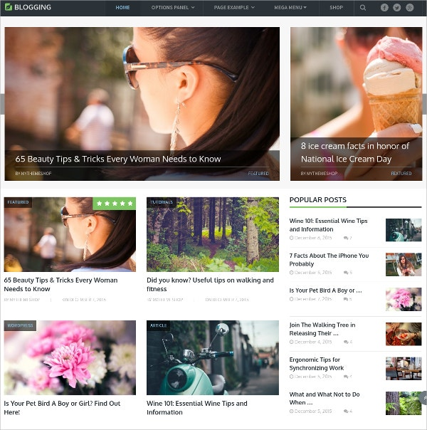 Beautiful Blogging WordPress Theme