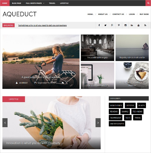Professional Free WordPress Magazine Blog Theme