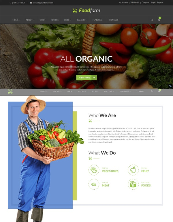 Organic Food Store WordPress Theme
