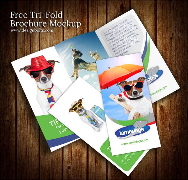 free tri fold brochure design mockup