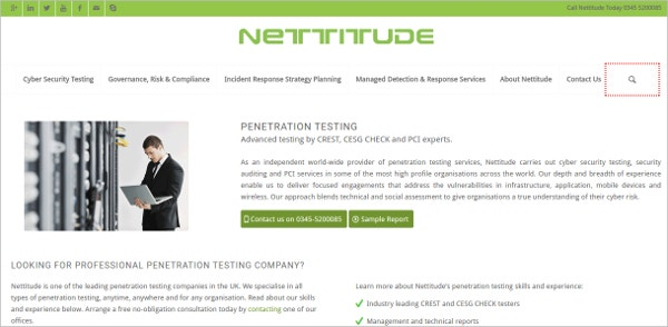Nettitude Website Penetration Testing Tool