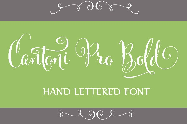 Cantoni Pro Bold Hand Lettered Font