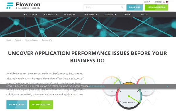 flowmon application performance monitoring tool