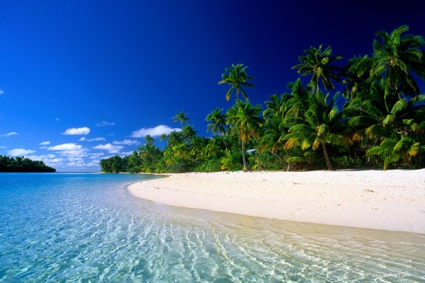 tropics beach background wallpaper download