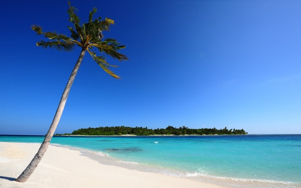 maldivian beach iphone background