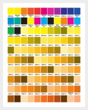Basic Pantone Solid Coated