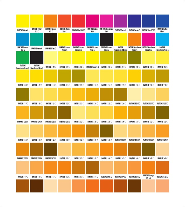 Pantone Color Chart Templates  Free Sample Example Format