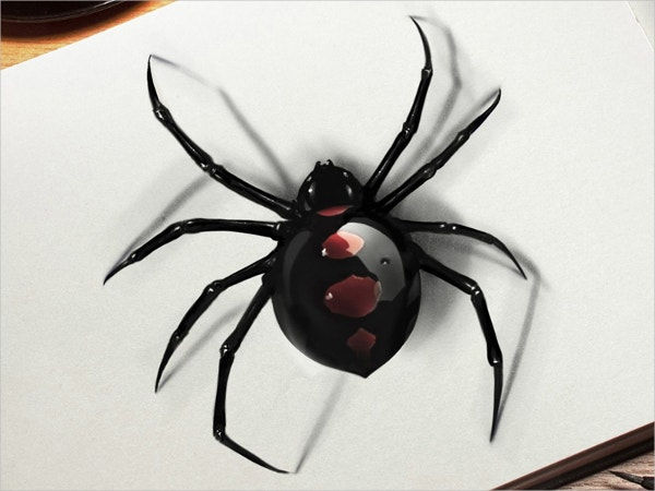 Spider 3d Tattoo Drawing