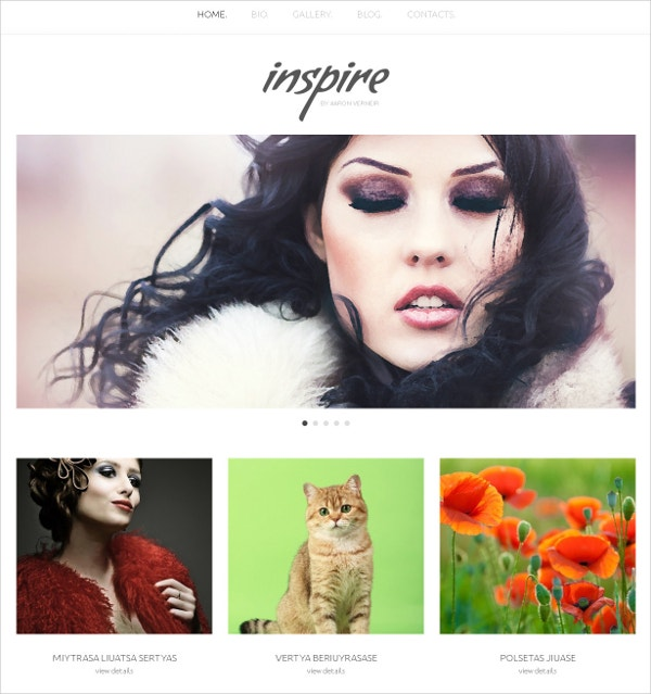 Responsive Artist WordPress Website Theme $75