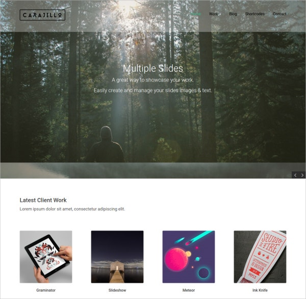 Photography Artist WordPress Website Theme $59