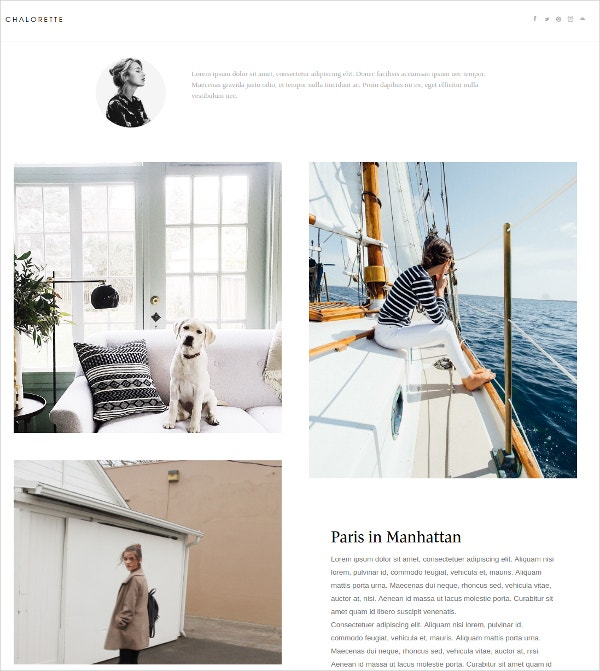 Artist Tumblr Website Theme $19