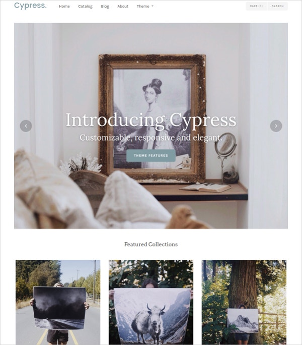Fully Responsive Artist Website Theme $140