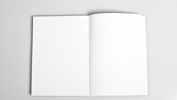blankbifoldbrochure1